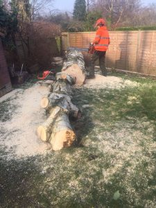 Gareden Maintenance Tree Services Leeds | West Yorkshire Tree Services