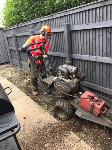 Cleaning after Tree Surgery Leeds | West Yorkshire Tree Services